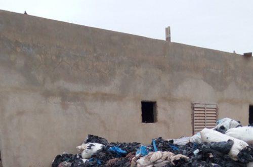 Article : Bamako : des déchet vivent, et font vivre !